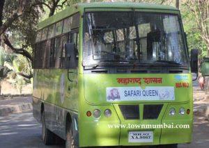 Tiger safari in sanjay gandhi national park2