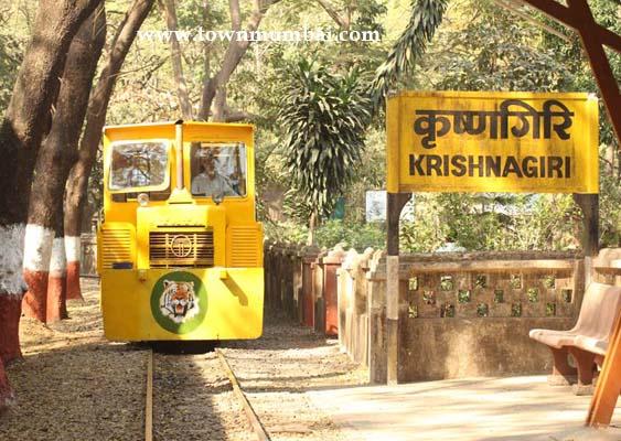 Vanrani -Toy train in sanjay gandhi national park6