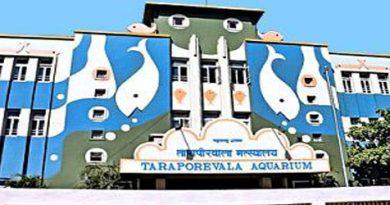 taraporewala-aquarium-mumbai