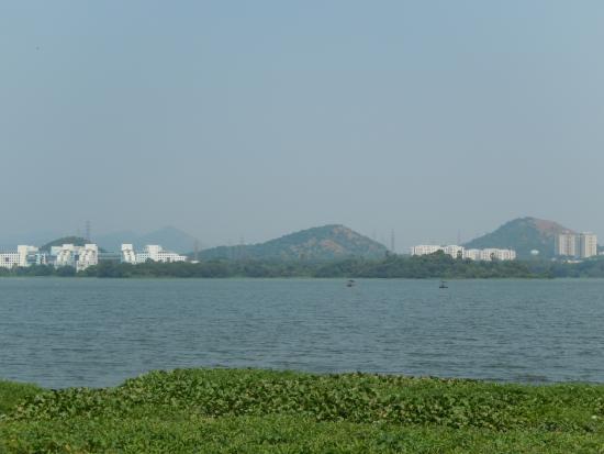 powai lake